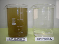 原水と浄化処理後の水