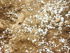 軽量土壌L1小粒
