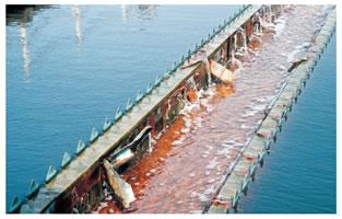 施工後4年の銅板水路
