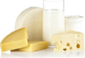乳製品・油脂