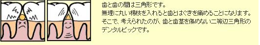 三角ようじ®「デンタルピック」