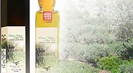 オリーブオイル「千年樹の雫」